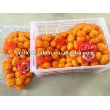 Sell 2013 nanfeng baby mandarin orange Brother kingdom