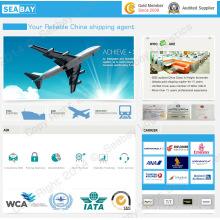 Free Air Freight Fracht Versandkosten Forwarder China in den Libanon