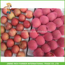 Cheap Fuji Apple #100, #120 and #133. 18kg/carton Grown In Paper Bag Grade A. Fresh Apple