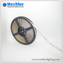 DC12V/24V RGBW LED Strip Light
