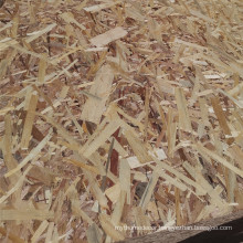 Factory price 15mm OSB plate OSB plywood 4x8 Osb board for furniture