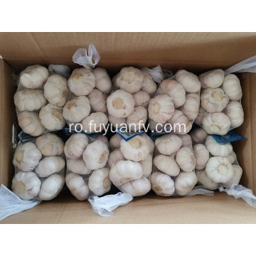 Fresh New Garlic este ambalat acum
