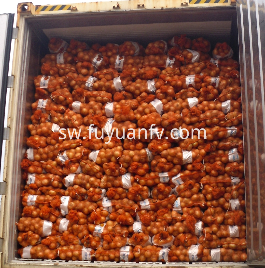 yellow onion packing