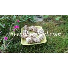 Dried Flower Mushroom, Shiitake Mushroom, Dried Vegetable