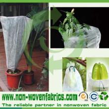 PP Non Woven Farbic Garden Fleece for Plant Covers