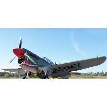 OEM Factory Sell 2.4G Remote Control Toy RC Airplane