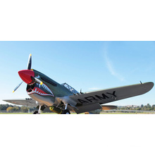 New Arrival Hot Selling DIY P40 12CH RC Plane