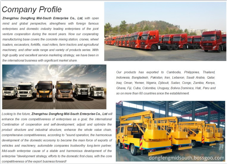 2-Company Profile-Dongfeng