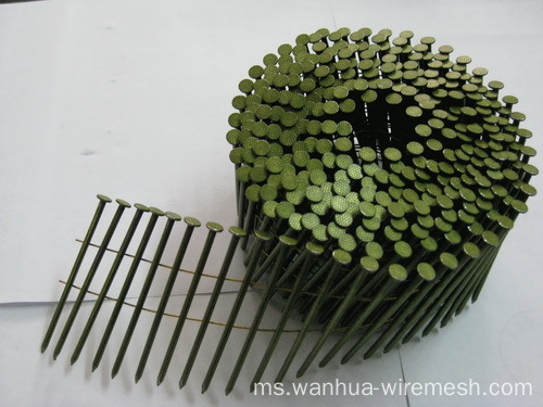 Coil Wire Nails For Wood