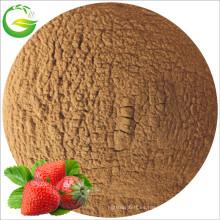 Fermento de ácido fúlvico hierro quelatado Fertilizante (50% FA + 10% Fe)