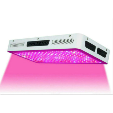 LED Grow Light per impianto interno rosso blu