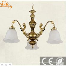 Lampe d'éclairage à économie d'énergie LED de protection de l'environnement 500 * 900mm