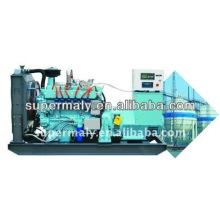 Generador de gas natural CE & ISO