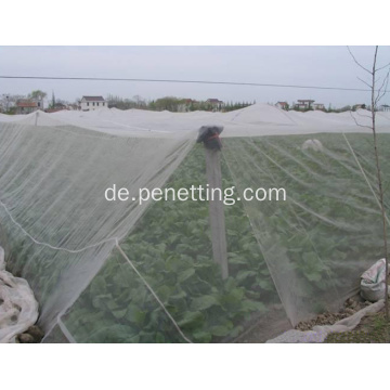 insect screen for greenhouse
