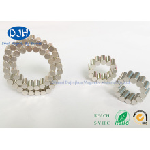 Zylinder-Magneten Gesinterte Magneten Seltene Erdmagneten