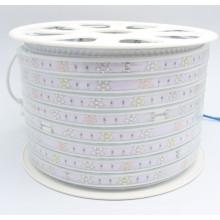 Multi Color Strip Lights SMD2835 for Decorative