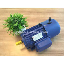Yej Series Three Phase AC Induction Electromagnetic Brake Motor