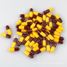 Capsule vide de qualité pharmaceutique la plus vendue