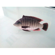 Grampo de laço da forma dos peixes, emblema feito sob encomenda (GZHY-LDJ-029)