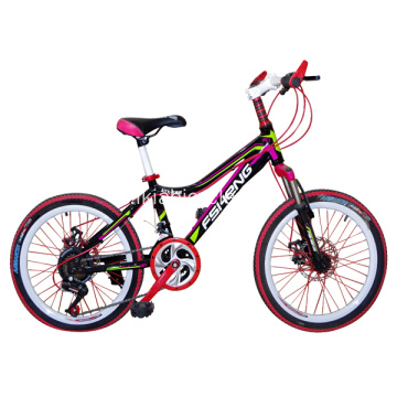 Fashion Road Bike 20 Inch Mountain Bike