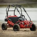 Kids Safe Gas Mini 50cc Buggy 49cc Mini Go Kart