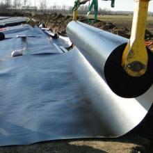 Precio del revestimiento de geomembrana impermeable para tanque de agua agrícola