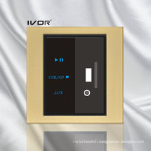 MP3 Decoder Switch Acrylic Material (SK-AP101)