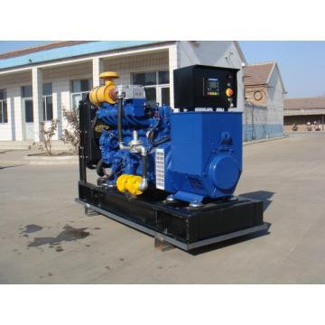 E & OIN approuvé 50KW générateur de gaz méthane à vendre