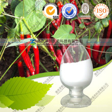 Health Care Product Fruit of Chili Extract Capsaicin