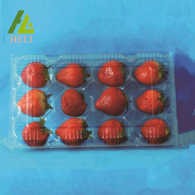 12 Compartments Plastic Strawberry Packaging Container