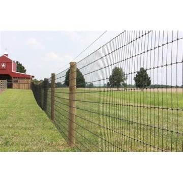 PVC Coated Field Fence Rusa Pagar Ladang