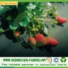 Tissu non-tissé de pp pour le contrôle de Weed d'agriculture / tapis