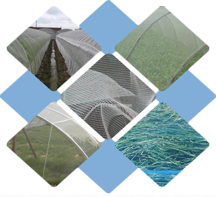 anti insect net3