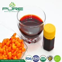 Bulk Organic Sea Buckthorn Seed & Oil ผลไม้