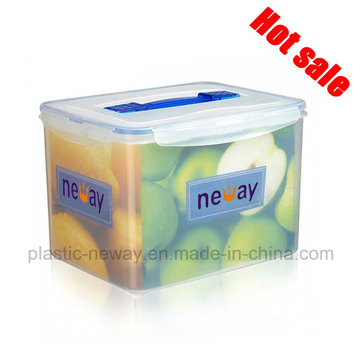 Large Transparent Container for Beer