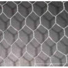 Chicken Wire Mesh Chicken Wire Netting Sizes China Supplier