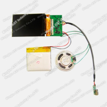 Promotional Video Brochure, LCD Video Player