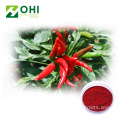 Capsicum Red Pigment Paprika Oleoresin Red Chili Farbe
