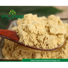 Organic Ginger powder with lowest price food flavoring