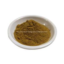 extrait de salvadora persica extrait de Miswak en poudre