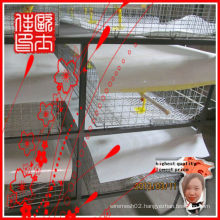 broiler chicken cage(manufactory)