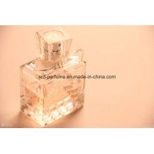 Good Sale Factory Fashion Design Fresh Fragrance