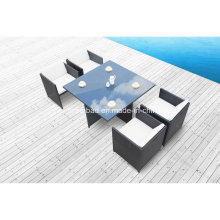Hot! Outdoor Rattan Dining Set for Garden with Four Chairs/SGS (8219-2A)