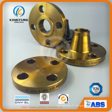 Hot vente en acier au carbone ASME B16.5 aveugle bride avec TUV (KT0016)