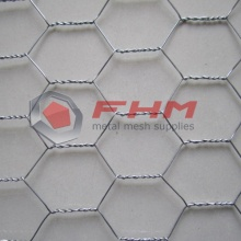 Galvanized Before Weaving Hexagonal Wire Netting for Bird