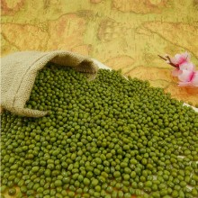 Frijoles Mung verdes chinos Frijoles verdes Mung Dal