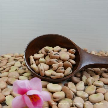 Getrocknete eingemachte Saubohnen mit bestem Preis