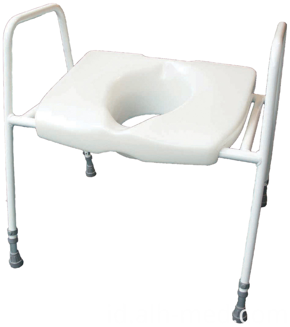 Raised toilet seat and frame