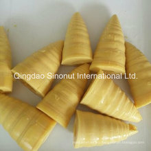 3000g Упаковка Консервированные побеги бамбука (HACCP ISO BRC)