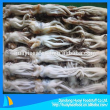 kinds of size sales well frozen squid head and squid tentacle